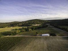 Gallery of Château La Coste Art Gallery / Renzo Piano Building Workshop - 19