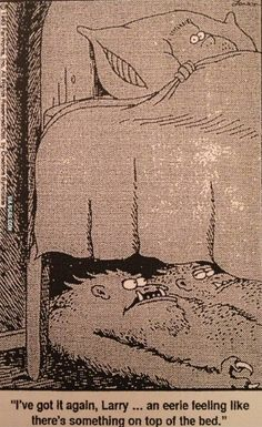 """I've got it again, Larry.an eerie feeling like there's something on top of the bed"" The Far Side - Gary Larson Far Side Cartoons, Far Side Comics, Funny Cartoons, Gary Larson Comics, Gary Larson Cartoons, Gary Larson Far Side, Monster Under The Bed, The Far Side, Parallel Universe"