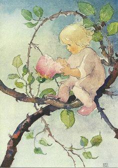 Mili Weber Rosenmärchen/ Fairytale of the Rose/ Conte des roses