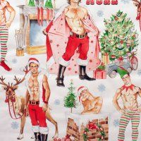 This is the best Christmas fabric EVER! Christmas Pin-up - Hurry Down the Chimney - Alexander Henry Have A Happy Holiday, Christmas Love, Xmas, Merry Christmas, Christmas Fabric, Snow Theme, Alexander Henry Fabrics, Gay Art, Cards For Friends