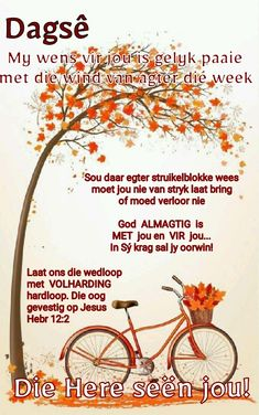 Good Morning Wishes, Day Wishes, Good Morning Quotes, Lekker Dag, Afrikaanse Quotes, Goeie Nag, Goeie More, Daily Quotes, Prayers