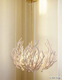 Moth Design - coral chandelier