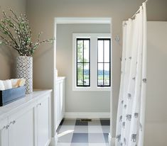 Requisite Gray By Sherwin Williams Neutral Paint Colors RequisiteGraySherwinWilliams