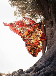 butterfly scarf (Hermes)