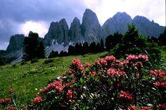 Parco naturale Puez Odle in Val Gardena |