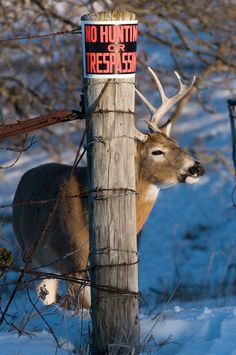 The big bucks intuitively know where to spend their time.