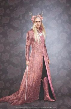 Wall | VK  - Thranduil in his Hello Kitty robes   - LOL