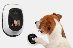 Digital Pet DayCare - Premium HD Dog Camera - Treats, Two-Way Video. This one is for all the pet owners who miss their pets while they're out all day. Not only can you see them, you can deliver them treats! Pet Daycare, Game Mode, Pet Camera, Dog Anxiety, Security Cameras For Home, Pet Treats, Pet Accessories, Dog Care, Dog Mom