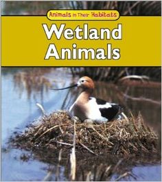 WETLANDS Habitat Series: Fresh Water Themed Printables, Freebies and Projects | Homeschool Giveaways