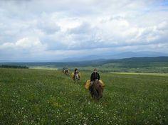 Horseback riding tours http://pohodural.ru/