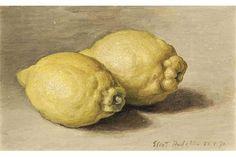 Eliot Hodgkin (1905-1987) Two Lemons signed and dated 'Eliot Hodgkin 23 V 70' (lower right) oil o