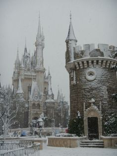 castle of Tokyo Disneyland