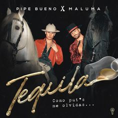 Tequila Pipe Bueno, Tequila, Papi, My Love, Movies, Movie Posters, Popular Music, Songs, Musicals