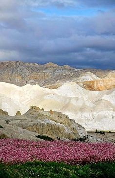 Contrast - Himalaya, Nepal