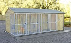 dog grooming shop design with boarding facilities | dog kennel 1bunn250 03 12 how to build a dog kennel d i y free ...