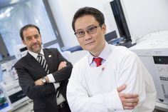 An international study, led by Macquarie University researchers Dr Edwin Lim and Professor Gilles Guillemin, has discovered the first blood biomarker –  a chemical identifier in the blood – for multiple sclerosis (MS), a debilitating disorder of the central nervous system that affects more than 23,000 Australians and 2.3 million people worldwide.