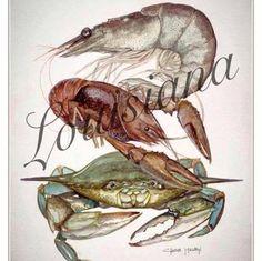 Louisiana shrimp, crawfish and crab. Looks like the artist is Chase Mullen. Louisiana Bayou, Louisiana Seafood, Louisiana History, Louisiana Homes, Louisiana Recipes, New Orleans Louisiana, Louisiana Kitchen, Cajun Decor, New Orleans Art