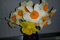 Άνοιξη γλυκιά μου, με τα υπέροχα τα χρώματα και με τις ομορφιές σου!