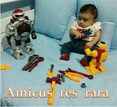 """""""Amicus res rara""""  Amigo é coisa rara : A friend is a rare thing"""