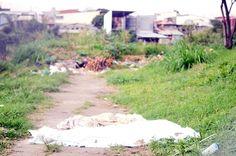 El cadáver quedó en la entrada del parque en La Peregrina de La Uruca Pilgrim, Entryway, Parks, Beach, Photos