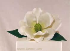 ~ Sugar Teachers ~ Cake Decorating and Sugar Art Tutorials: Southern Magnolias- Sharon Zambito's Method