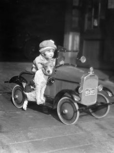 Girl in Toy Pedal Car With Dog Sitting on Running Board . I was old when my parents and uncle gave me Alsatian pup for my birthday whom we had each other for I still have dogs today. Fox Terriers, Chien Fox Terrier, Wire Fox Terrier, Vintage Dog, Vintage Children, Vintage Pictures, Vintage Images, Pedal Cars, Jolie Photo
