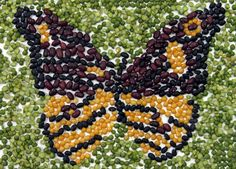 Butterfly bean mosaic. WOW! Love these! Keion41's art on Artsonia