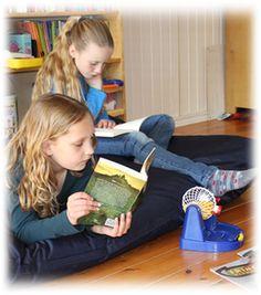 FRINGO is een leesbevorderingsproject in spelvorm dat jaarlijks in de maanden januari en februari plaatsvindt. FRINGO wordt samengesteld voor leerlingen van de groepen 5, 6, en 7 van het basisonderwijs.