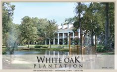 Owned and operated by John Folse, chef. Food, delicious. White Oak Plantation