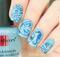 Dolphin sea nails