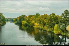 Blick von der Hinkeldeybrücke (Okt 2016) #Berlin #Deutschland #Germany #biancabuergerphotography #igersgermany #igersberlin #IG_Deutschland #IG_berlincity #ig_germany #shootcamp #shootcamp_ig #pickmotion #berlinbreeze #diewocheaufinstagram #berlingram #visit_berlin #Herbst #autumn #canon #canondeutschland #EOS5DMarkIII #5Diii #Landschaft #landscape #BerlinSpandauerSchifffahrtskanal