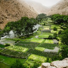 Atlas Mountains, Morocco. An amazing Berber Oasis.