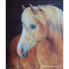 Palomino HORSE portrait, Original OIL PAINTING on canvas, Framed, Hand... ($420) ❤ liked on Polyvore featuring home, home decor, wall art, canvas oil paintings, framed wall art, horse wall art, animal wall art and portrait oil painting