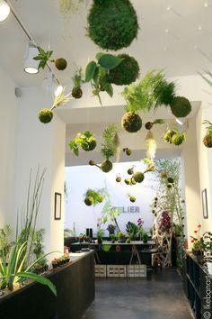 Unique Kokedama Ball Ideas for Hanging Garden Plants - Home Decor Ideas Ikebana, Hanging Plants, Indoor Plants, String Garden, Deco Nature, Decoration Plante, Deco Floral, Style Floral, Elle Decor