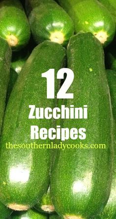 12 Zucchini Recipes: It's that time of year where I start to get zucchini overload from my garden. These 12 recipes will help you use up this very versatile vegetable! #4. Cheddar Zucchini Biscuits: These little biscuits are delicious and go great with any meal. We love them for....