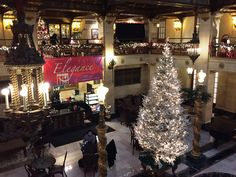 Christmas Tree Elegance 2015, view of the coffee shop.