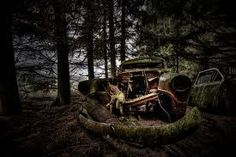 an abandoned car being hugged by tree roots