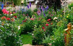 Deben usarse plantas altas y que florezcan en las puntas. Para complementar, las petunias, geranios y otras pequeñas flores se colocan en montículos donde con sus distintos colores generen un ambiente atractivo por lo bajo. Los helechos también son buenos para añadir textura y contraste y por su parte el romero, el tomillo, la salvia, el perejil y el eneldo son algunas de las hierbas más comunes para tupir los pisos de verde. En arcos o pérgolas van rosas, clemátides o glicinas.