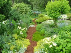 I can hear the wood chips crackling under my feet... ahhh, would love to walk through this garden & smell those flowers!