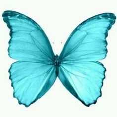 You are my Blue Butterfly Darling...I'am missing you a lot ;)