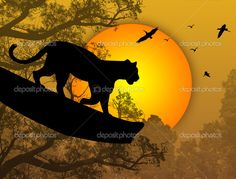 stock vector : Silhouette view of panther on a tree at beautiful sunset, vector illustration Modern Canvas Art, Power Animal, Lion Of Judah, Silhouette Art, Beautiful Sunset, Black Panther, Animal Drawings, Drawing Sketches, Illusions