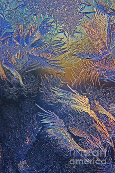 °Frosty Window by Jamie Rabold
