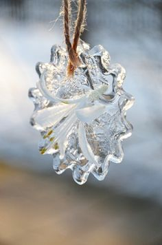 Ice flowers! // DIY from the Swedish blog Berså.