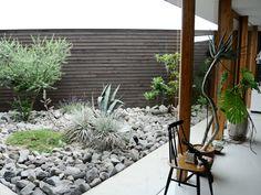 Interior Architecture, Interior And Exterior, House Roof, Succulents Garden, Land Scape, Garden Landscaping, Shrubs, Gardening Tips, Outdoor Living