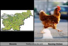 Slovenia = Chicken