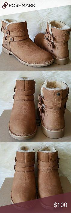 322d54137b8 Teva Wander Chuckka Sneakers Shoes Black 8.5 Women NWT | Suede ...