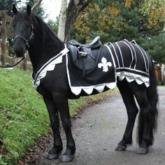 I think every horse owner needs this for Halloween! Medieval Horse Costume Pattern (With Breeching)