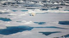 This September (2017), the extent of Arctic sea ice shrank to roughly 4.7 million square kilometres, scientists have determined.