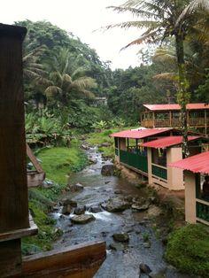 Puerto Rico  Este sitio es Guavate, donde encuentras el mejor cerdo asado en P.R.