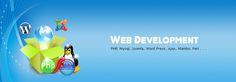 Web development process includes Web design, Web content development, client-side/server-side scripting and network security configuration, among other tasks. Web development process includes Web design, Web content development, client-side/server-side scripting and network security configuration, etc.   Source(S): http://sjAINVENTUres.com/